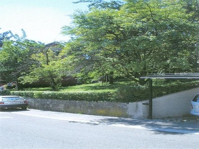 Zelenjak, Horvatovac, 400m²